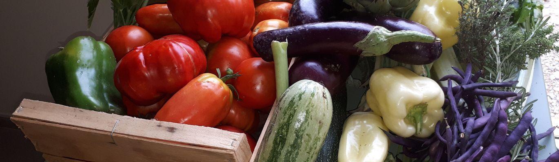 Notre table : récolte du jour chambre d'hôte ain gite de France ain